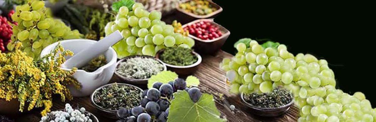 Et voici les prodigieux raisins coupe-faim